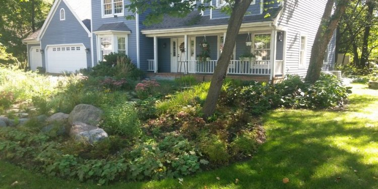Mulch bed landscape transitional with flower chicago building