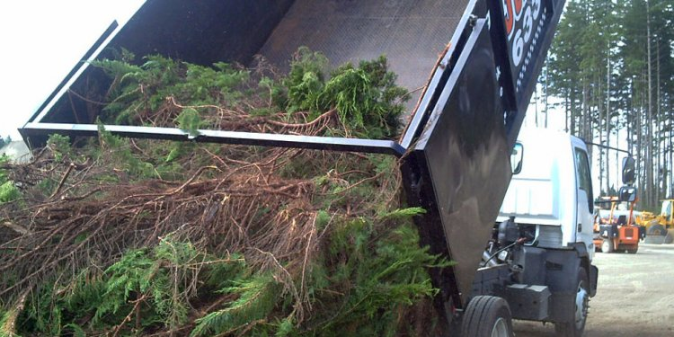 Best Junk Removal Services Kitsap County
