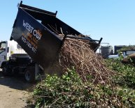 Junk Removal and Hauling Services